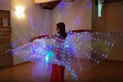 Olga LED-tiibadega